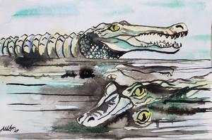 1809 Crocodiles